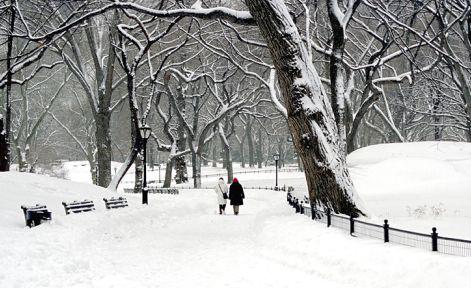 motion i sne